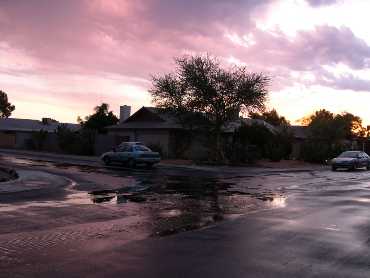 Sunrise After a Morning Rain.